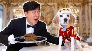 Treating My Elderly Dogs Like Royalty For a Day | Smile Squad