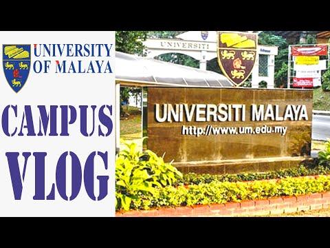 The Campus of Universiti Malaya  VLOG 1