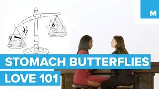 Скачать The Science Behind Butterflies Love 101