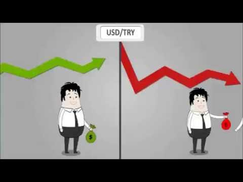 Forex stop out nedir