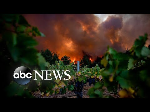 California fires, camel racing, coronavirus tribute; The World in Photos, Sept. 28