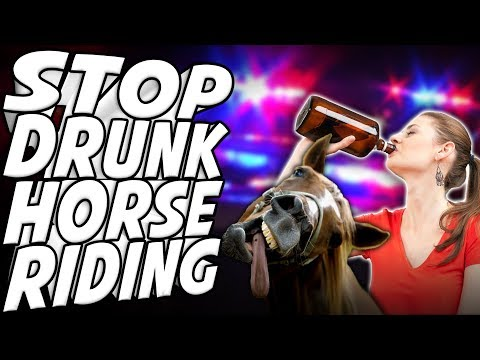 Can You Drunk Drive a Horse? - Internet Today