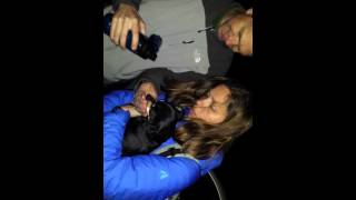 Piper The Lost Chihuahua Dachshund Cross Found And  Reunited With Mom And Dad!!