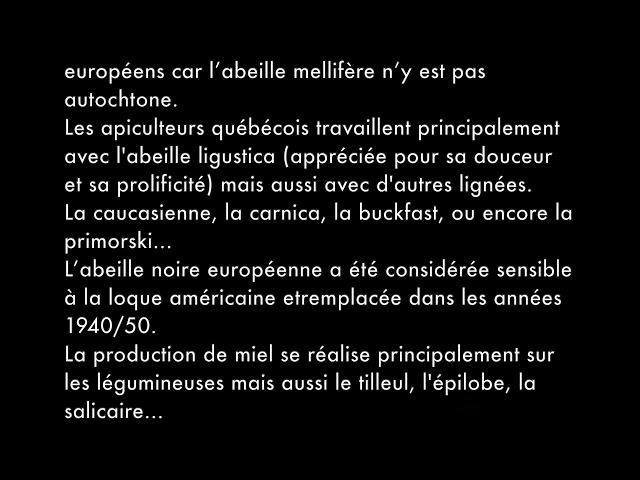 Résumé de la visioconférence Houle / Marceau sur l'hivernage des colonies d'abeilles au Québec.