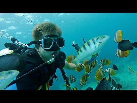 Дайвинг на Филиппинах - Боракай. Как я плаваю без сертификата? Филиппины #2