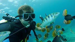 Дайвинг на Филиппинах - Боракай. Как я плаваю без сертификата? Видео из путешествия. Часть 2