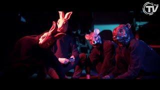 Martin Garrix - Animals [Official Video HD] - Stafaband