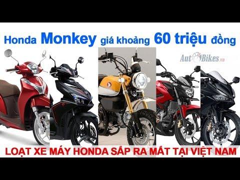 Hé Lộ Loạt Xe Máy Honda Sắp Ra Mắt Tại Việt Nam. #HondaMonkey Giá Khoảng 60 Triệu đồng