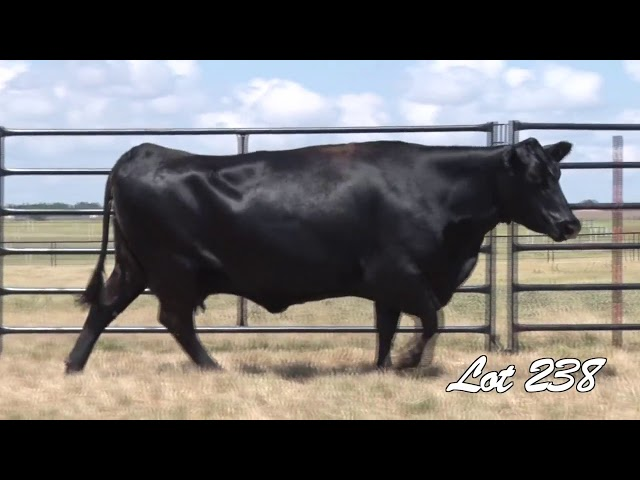 Pollard Farms Lot 238