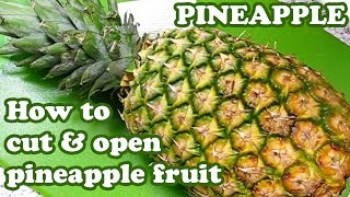 How To Cut A Pineapple - Open Peel Cutting Slice Ripe Pineapples Fruit - Knife Cutter Peeler Jazevox