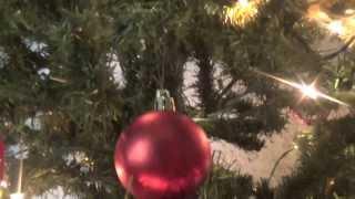 Panelistas de Tolerancia Cero envían mensaje navideño