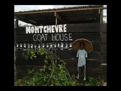 Montchevre & Home of Hope Goat Farm Project (Asebu, Ghana)