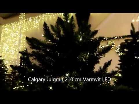 Star Trading Julgran Calgary LED