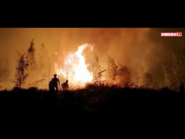 🎥 Incêndio Florestal na Localidade de Montemor, no Concelho de Loures