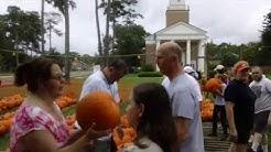 Pumpkin Cam - SUMC Pumpkin Patch