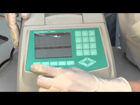 Setting up the PCR reaction