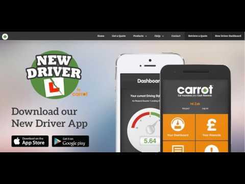 Car Insurance  Carrot