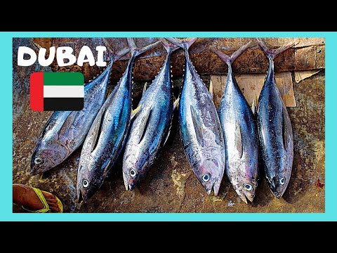 DUBAI'S FISH MARKET: Expert cleans, cuts and slices 35Kg fish in seconds