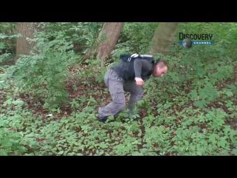 Beer Grylls goes Dutch - Man vs. Wild parody