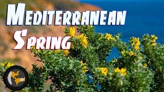 FRANCE | Mediterranean Springtime Highlight Reel | Planetlenz