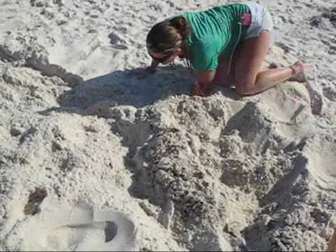 Homeowners Cleaning West Beach in Gulf Shores after BP Oil Spill