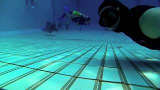 Brica B-Pro 5 Alpha Freediving At Senayan
