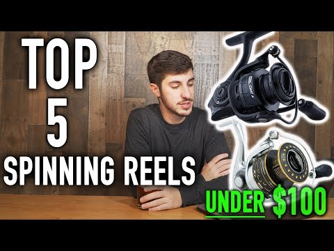 The BEST Spinning reels Under $100 (2019)