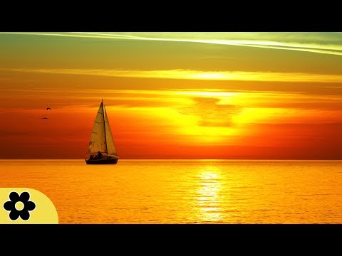 8 Hour Relaxing Sleep Music, Calm Music, Soft Music,  Instrumental Music, Sleep Meditation, �C