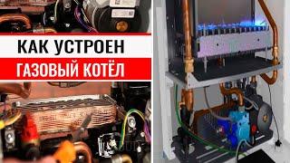 видео Принцип работы газового котла