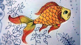 Книга раскраска Таинственный сад , Антистресс.  Рыбка.