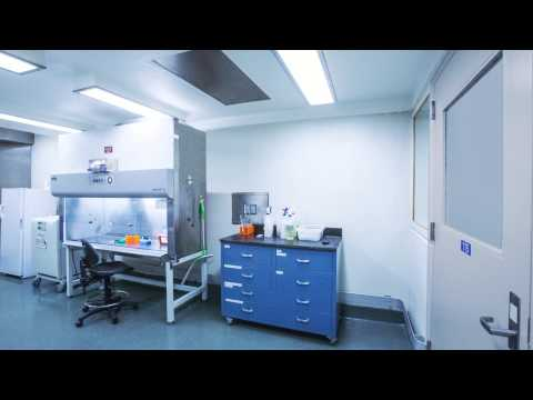 Biological Safety Cabinet (BSC):  How it Works to Protect You
