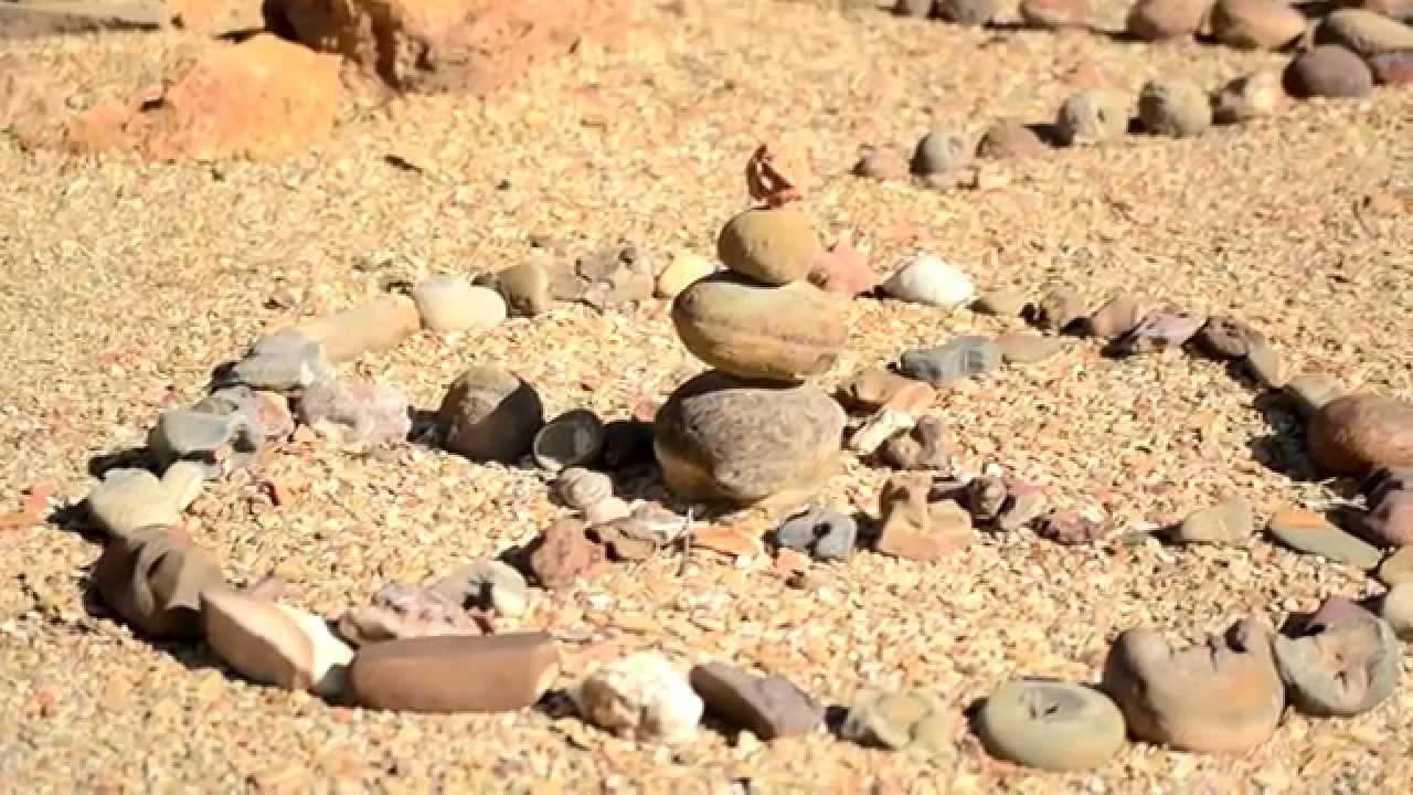 Fibas jard n del desierto youtube for Jardin del desierto