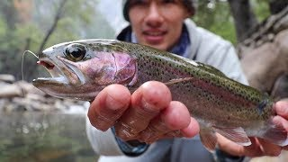 Rainbow Trout Fishing in a Super Clear River (California Sierras)