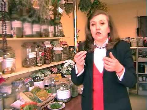Ранок-панок. Марія Пахолок. Корисні трави у харчуванні