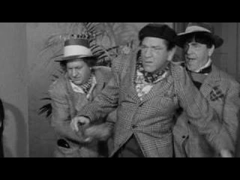 The Three Stooges 126 Studio Stoops 1950 Shemp, Larry, Moe