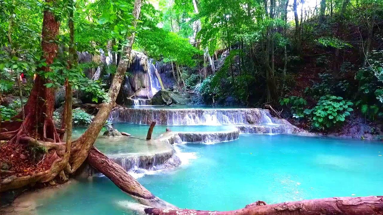 Dua Cagar Biosfer Baru di Indonesia Diakui UNESCO