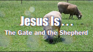 #3: Jesus is...The Gate and the Shepherd