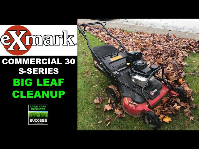 Big Leaf Cleanup with the Exmark Commercial 30 | Oddly Satisfying!