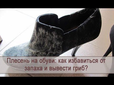 Как очистить обувь от плесени