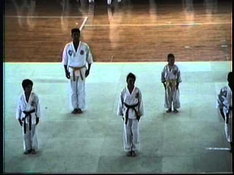 Various Karate Schools meet in Okinawa. Sept 1991.