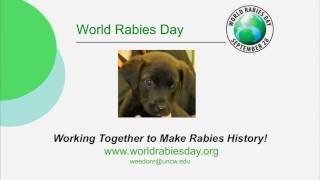 K-State Rabies Lab Presents Johnny the Puppy, Part II