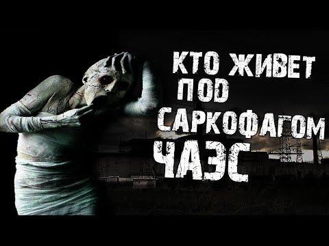 Страшные истории на ночь - Кто живет под саркофагом ЧАЭС