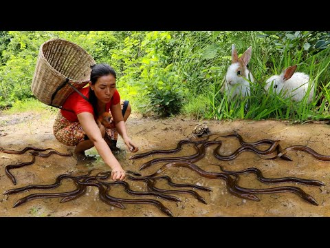 Download Women with baby monkey catch eel in flooded forest-Cooking ell spicy chili eating  in forest