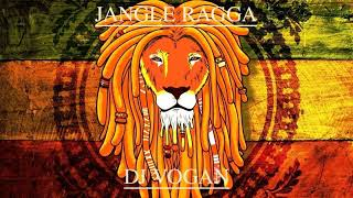 Download DJ VOGAN - RAGGA/JANGLE  DnB mix