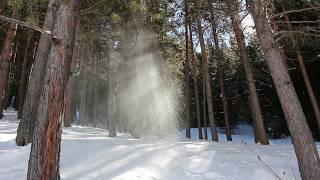 """Медитация """"Весна приходит"""" снег с деревьев падает на солнце удивительная природа и прекрасная музыка"""