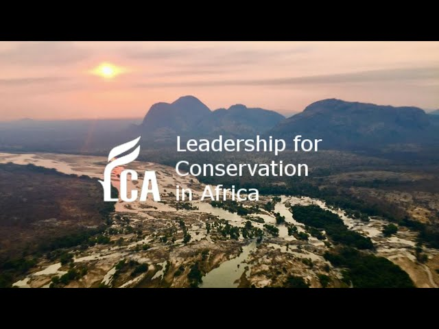 Be inspired by the Niassa Carnivore Project