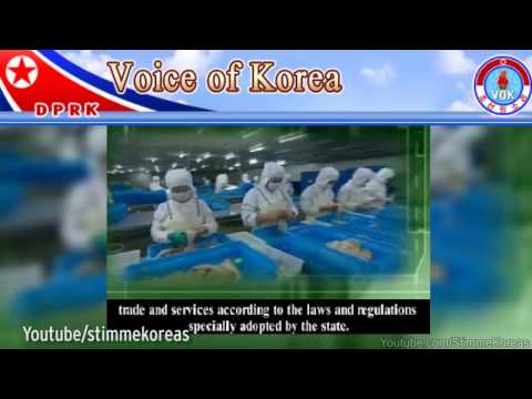 Watch North Korea's bizarre publicity video encouraging businesses to open in secretive countr