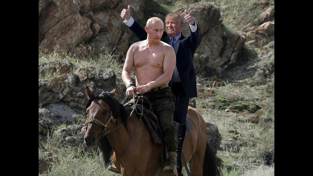 Putin Und Trump Auf Pferd