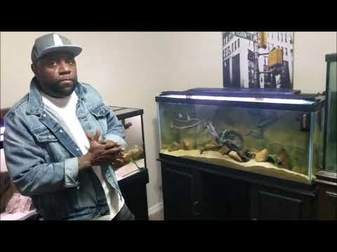 My day with IFG, the Inquisitive Fish Guy! Must Watch!