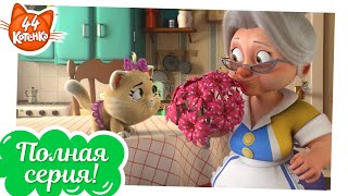 44 Котёнка  Секретный приём Пончика ПОЛНАЯ СЕРИЯ